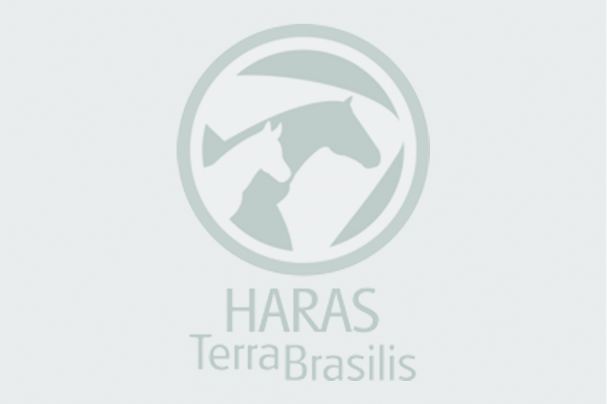 haras_img4